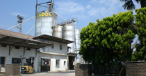 follador production and sale of corn cob