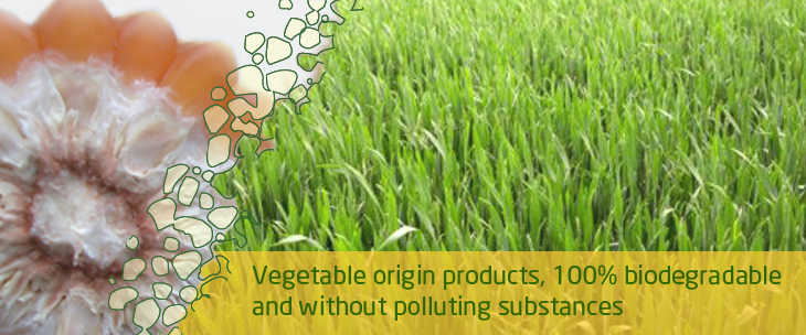 03-vegetable-biodegradable-products.png